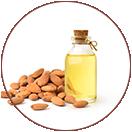 Sweet Almond Oil KEY INGREDIENTS of WOW Skin Science Rice Hair Oil