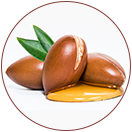 Moroccan Argan Oil KEY INGREDIENTS of WOW Skin Science Rice Hair Oil