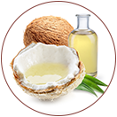 Coconut Oil KEY INGREDIENTS of WOW Skin Science Rice Hair Oil