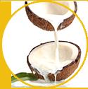 Coconut Milk Extract