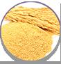 WOW Skin Science Amazon Rainforest Volcanic Gold Clay Body Wash