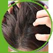 WOW Skin Science Onion Black Seed Hair Oil that boosting hair regrowth